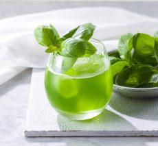 gin ondina basil