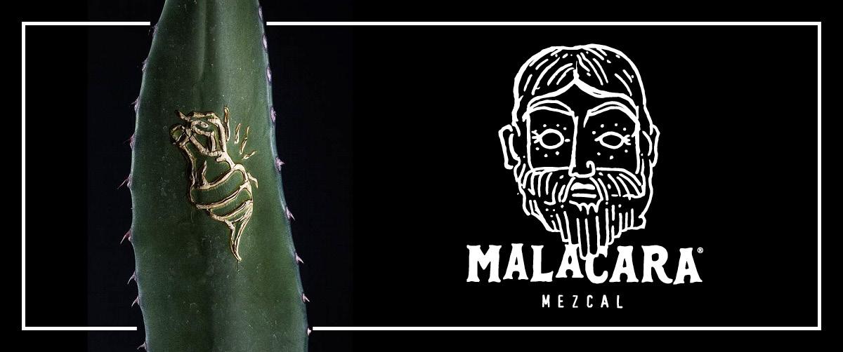 Malacara: el ritual del Mezcal