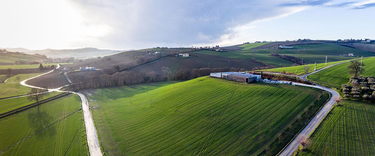 Mancini Pastificio Agricolo, dal cuore di grano delle Marche