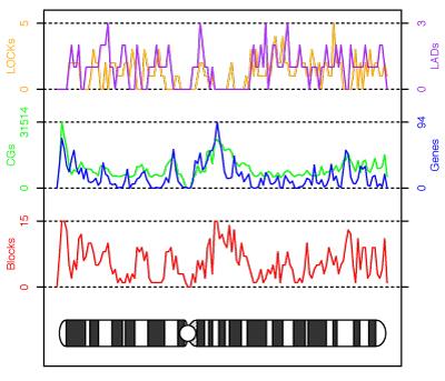 genome_scale_blocks1