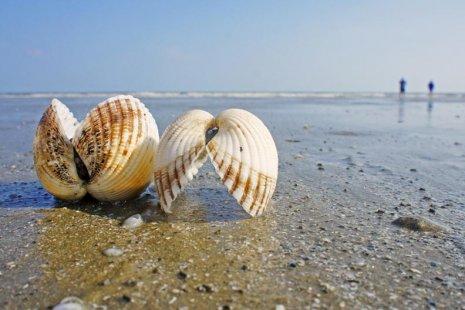 Imagini pentru imagini frumoase cu plaja mării