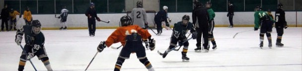 hockey banner 1