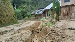 Tanam Pisang Ditengah Jalan Poros Bambang Sebagai Bentuk Kekecewaan