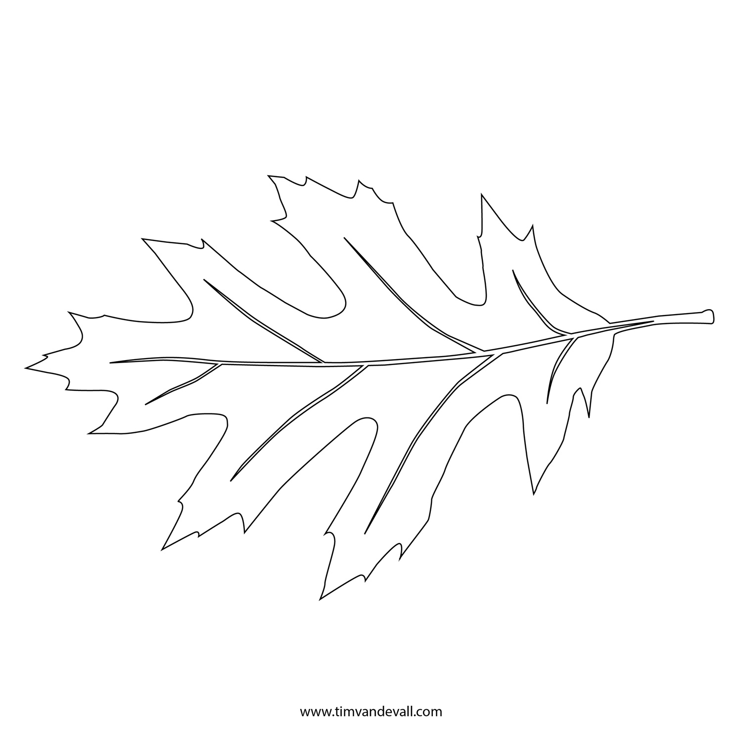 Printable Leaf Stencil Outline And Silhouette