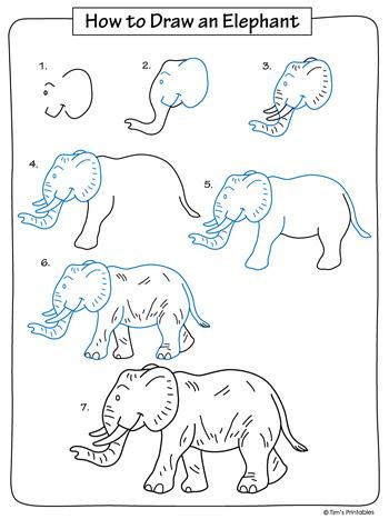 elephant drawing tutorial