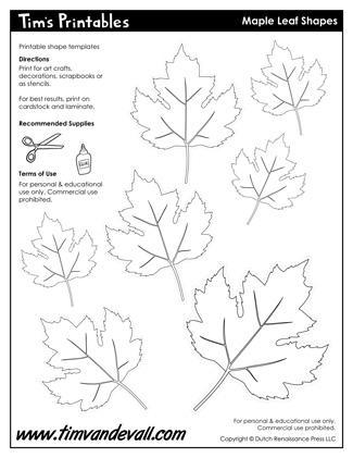 Maple Leaf Shapes