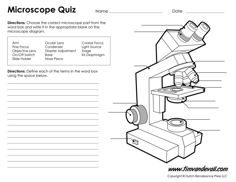 Compound Light Microscope Parts And Functions Worksheet | www ...