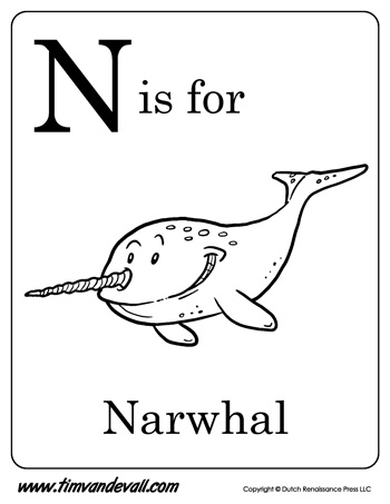 n is for narwhal letter n