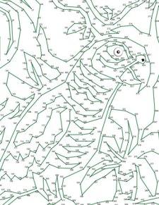 Parrot Dot-to-Dot