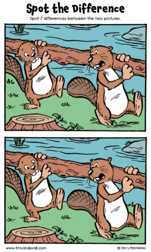 "Spot the Difference 15 - ""Beaver Builders"""