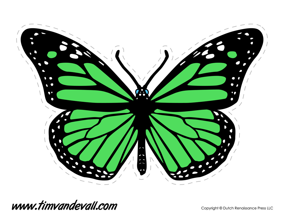 Green Butterfly Tim S Printables