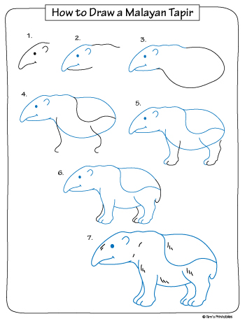 how to draw a malayan tapir black and white