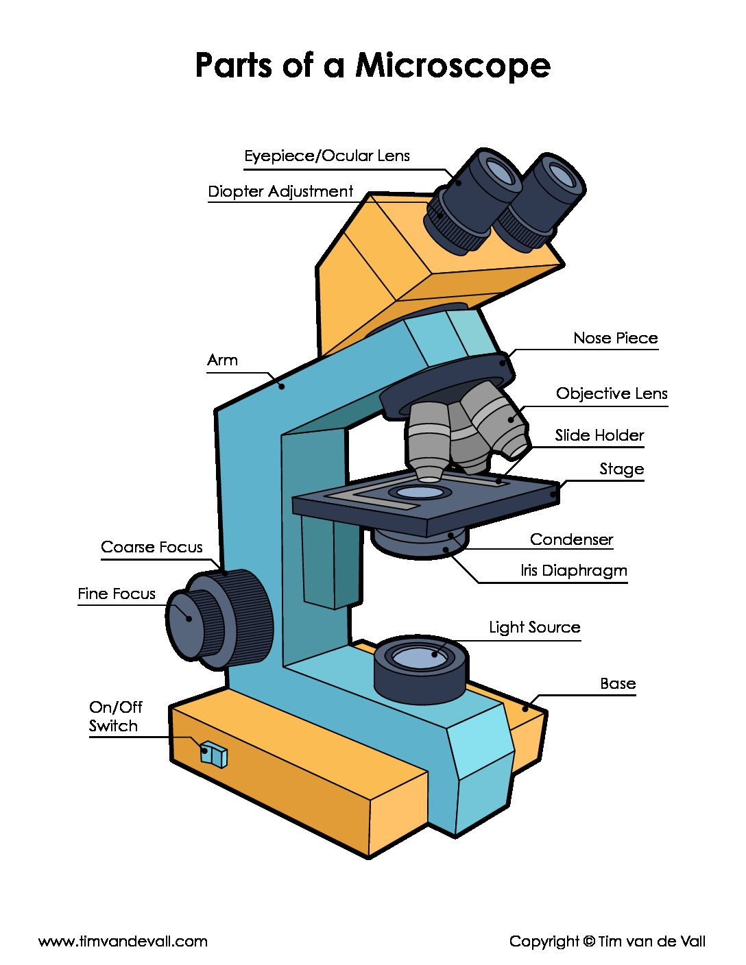 Microscope Parts Diagram