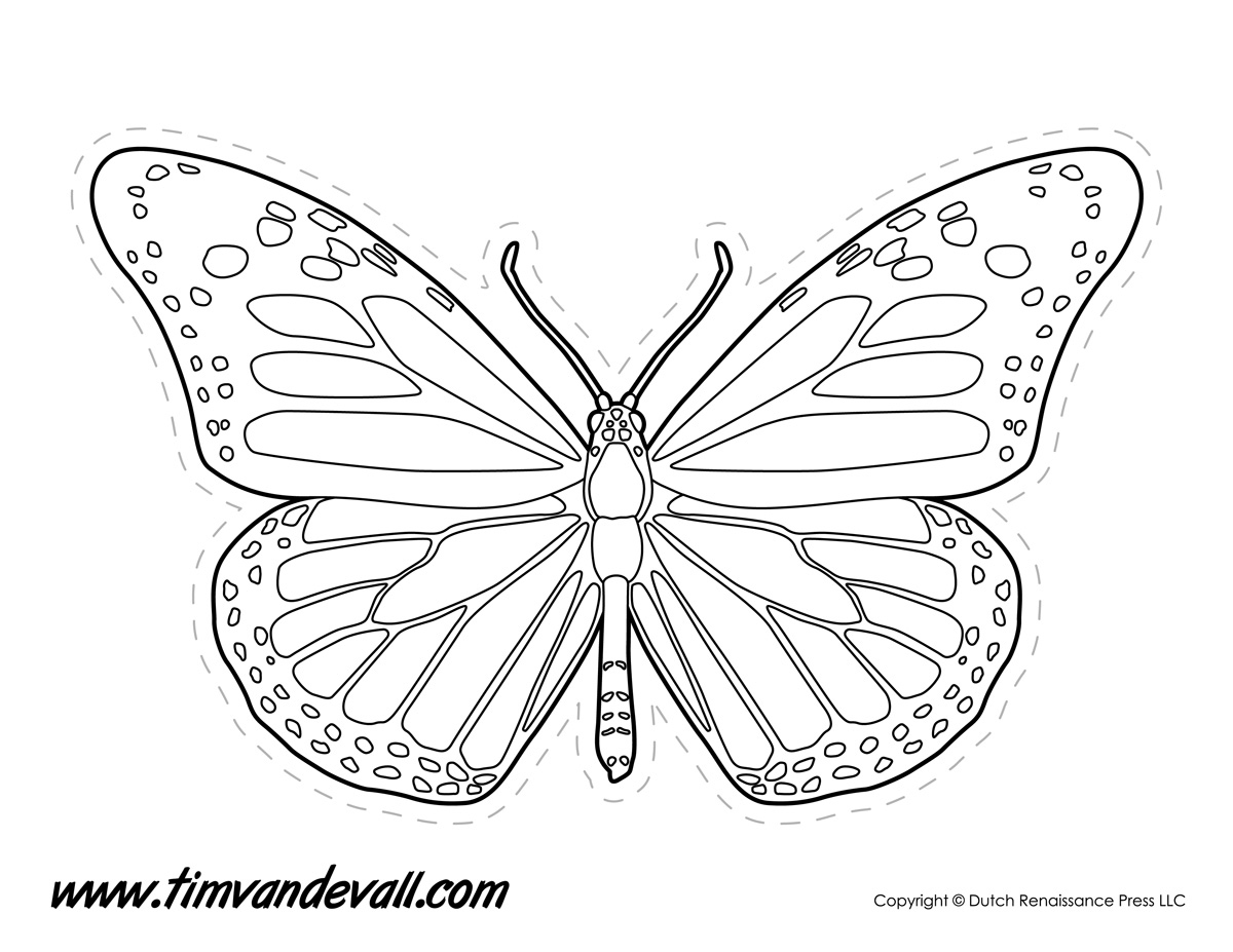 Monarch Butterfly Outline Tim 39 s