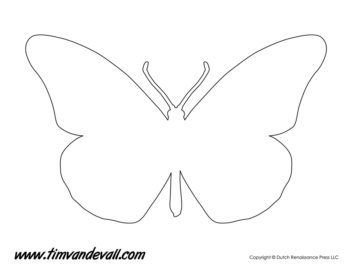 Exhilarating image regarding butterfly stencils printable