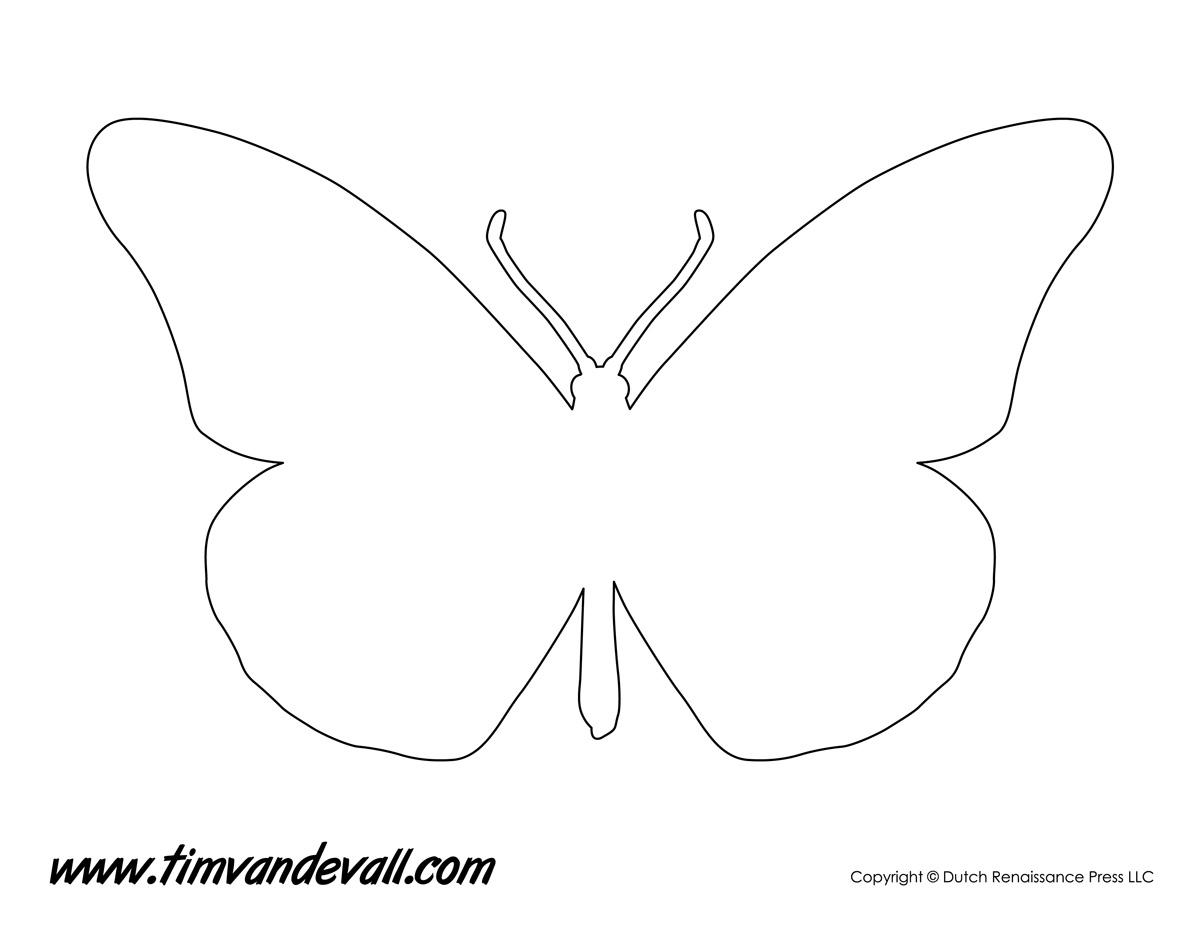 monarch butterfly stencil