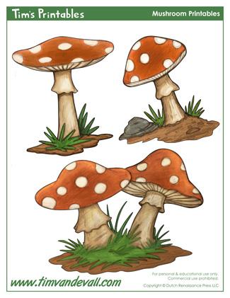 Mushroom Templates