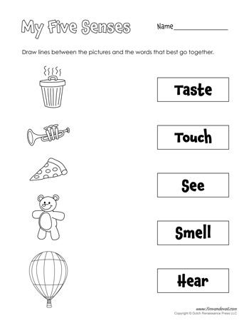free five senses worksheets for kids 5 senses craft. Black Bedroom Furniture Sets. Home Design Ideas