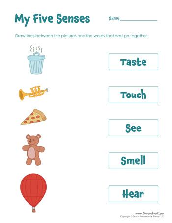 printable 5 senses worksheet