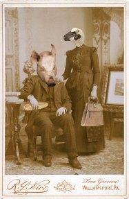 Pig&Sheep
