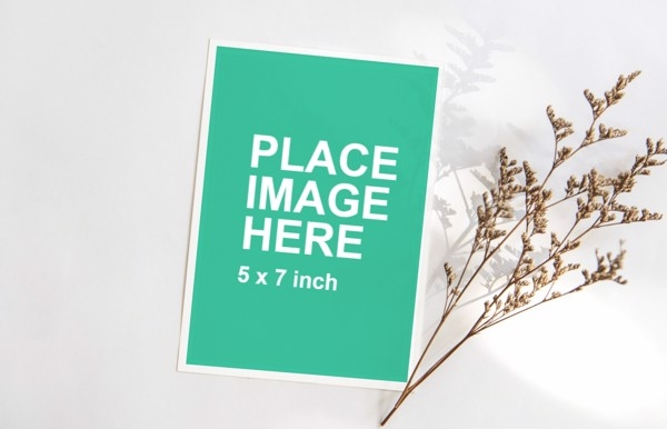 blank greeting card with flower for mockup template from wisdomm