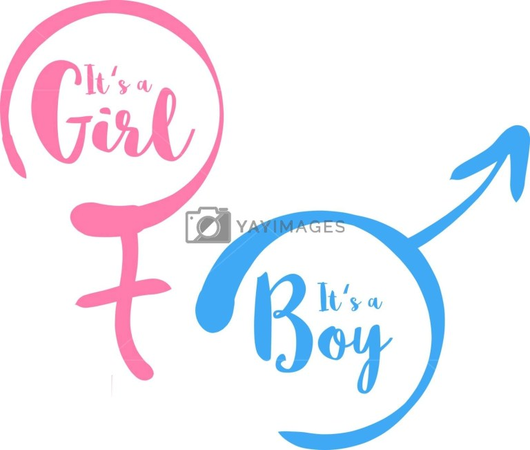 its a boy or girl ba shower invitation template