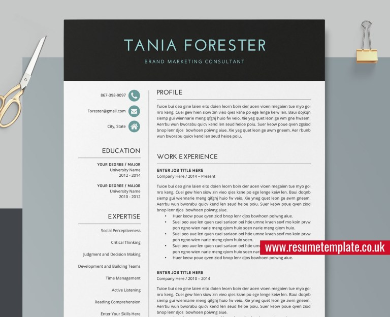 professional resume template for freshers cv template