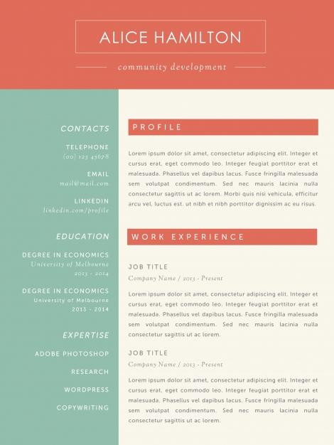 attractive resume template fancy