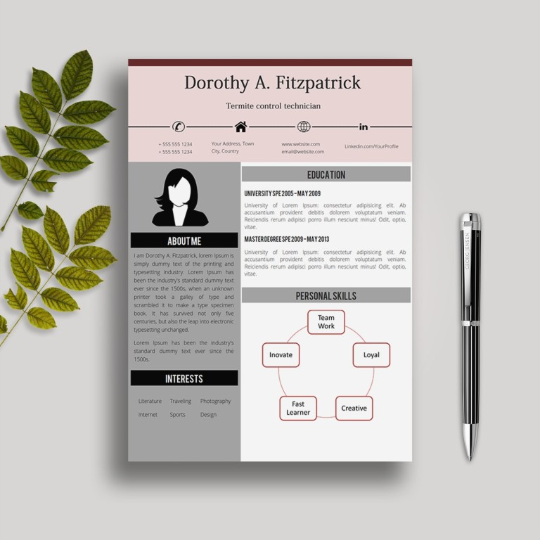 creative cv template in ms word dorothy creative