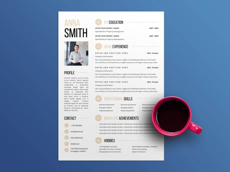 free clean and attractive resume template pivle