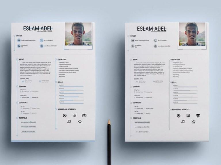 free clean cv resume template download resumekraft