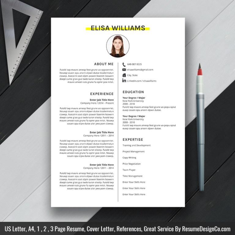 professional ms word resume cv template curriculum