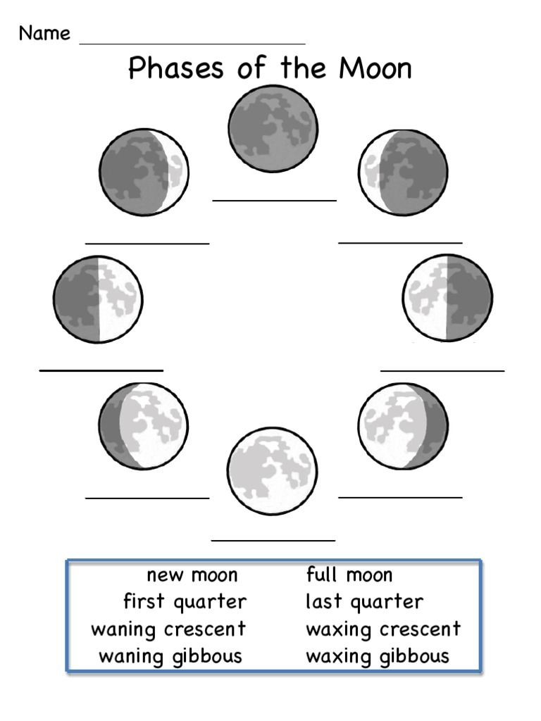 Moon Phases 2022 Coloring