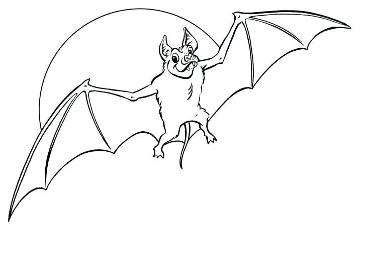 Realistic Bat Coloring Pages