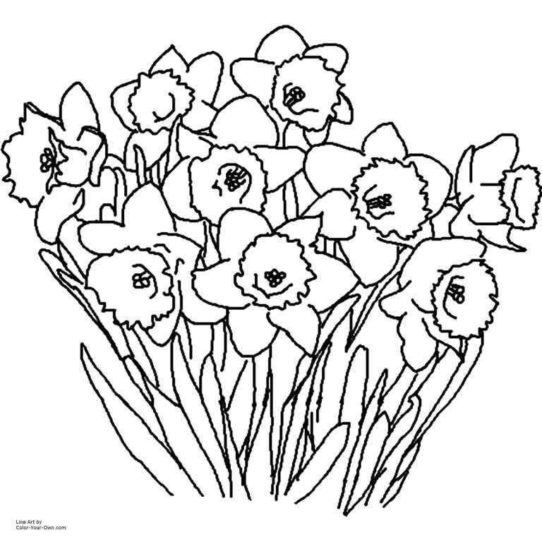 adult flower coloring pages