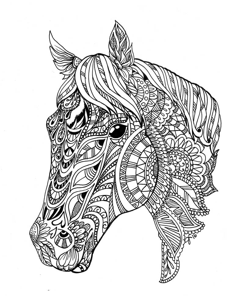 free horse coloring pages for adults printable online