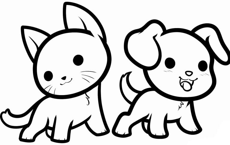 animal baby cat and dog books
