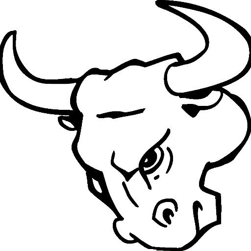 Chicago Bulls Outline