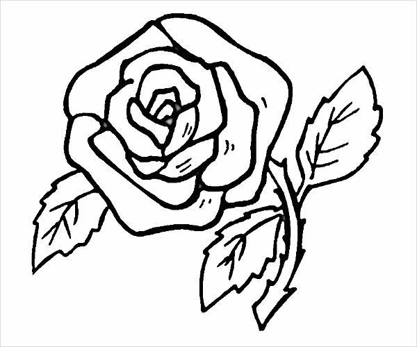 Color Book Rose