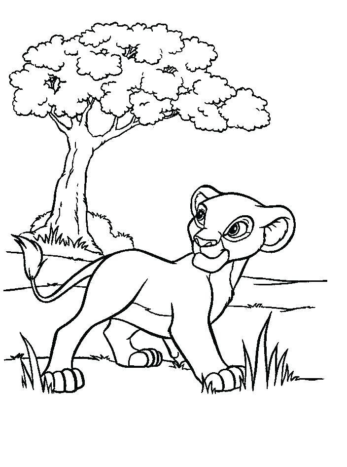 Lion Guard Coloring Sheets