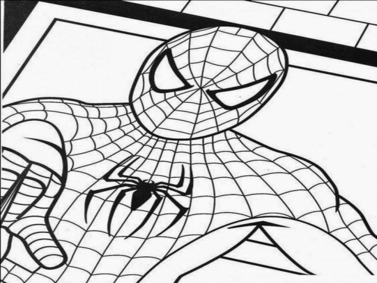 Spiderman Color Sheet