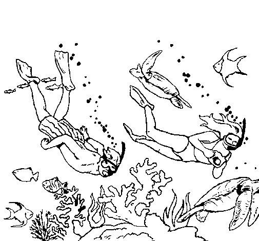 superb divers coloring page