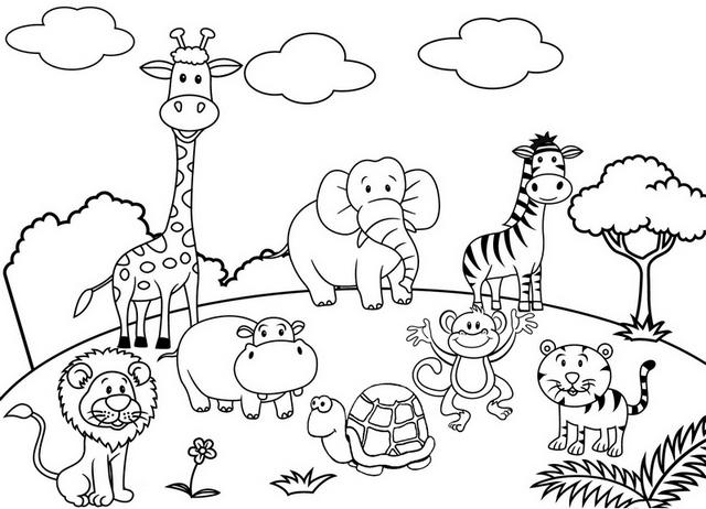 Zoo Animal Coloring Sheets