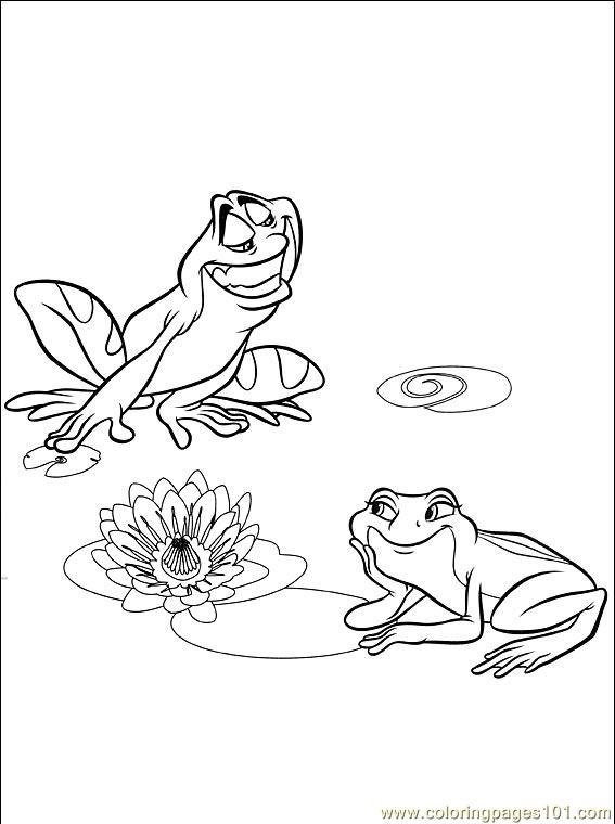 Animal Frog Coloring