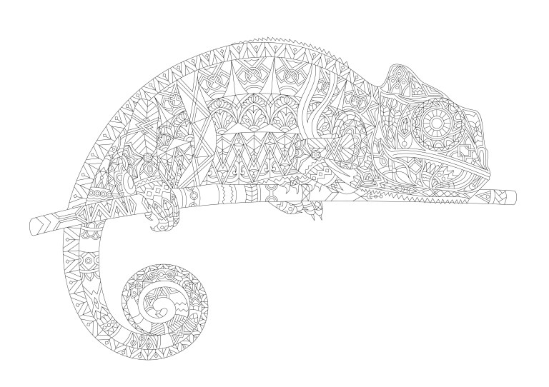 Cameleon Coloring Pages