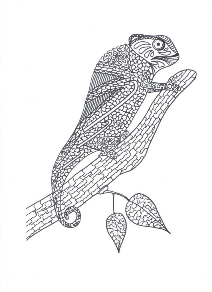 Chameleon Color Pages
