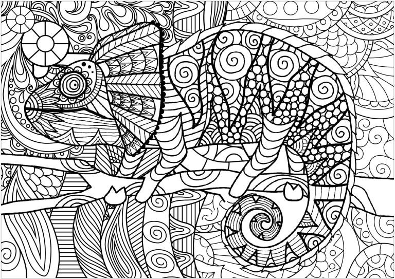 Chameleon Outline Printable