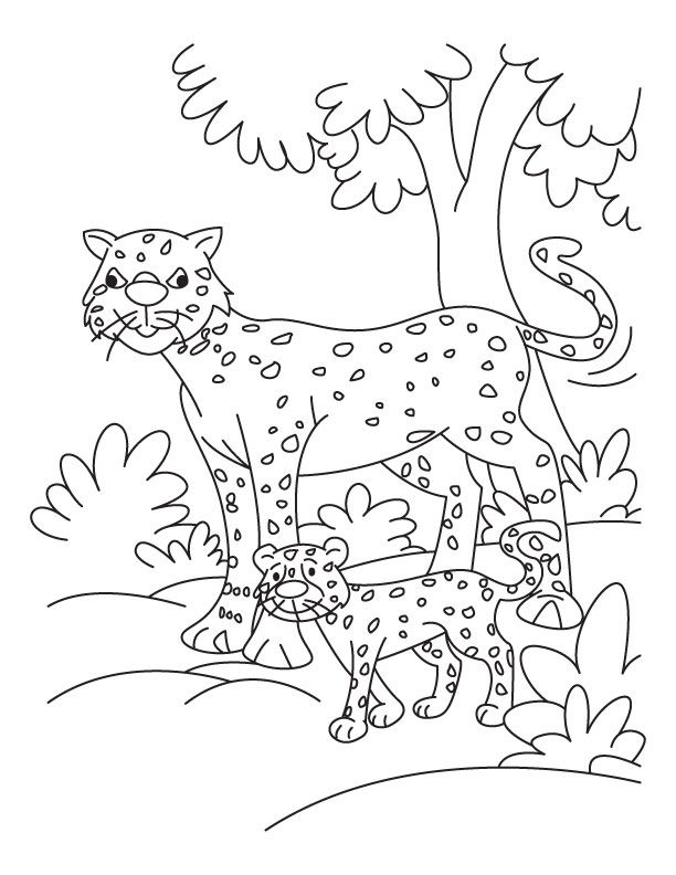 Cheeta Coloring Pages