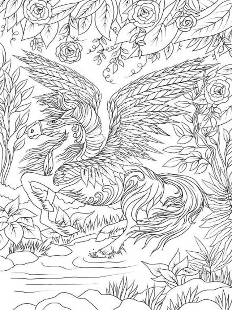 Coloring Page Pegasus