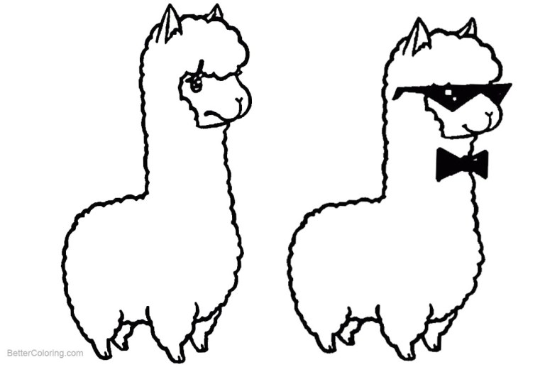 Free Printable Llama Pictures